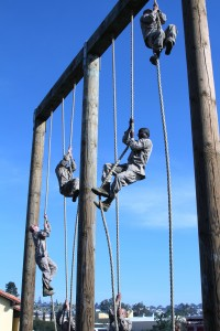 U.S. Marine recruits conduct a rope climb while attacking the obstacle course at Recruit Depot Parris island.